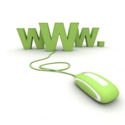 عدم امکان مشاهده سایت با Www پس از تغییر DNS