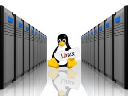 8 عامل مهم در انتخاب سرور مجازی لینوکس